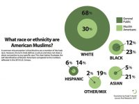 Civic and racial identity of American Muslims (Dr.Sherman Jackson)