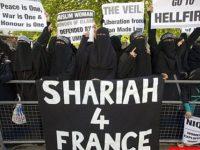 Some mistakes of European Muslims: shaykh Ahmad Ali Adani